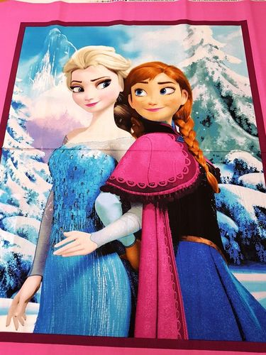 Disney Princess.Elsa and Anna panel