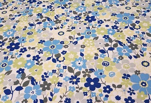 Blue floral cotton poplin.